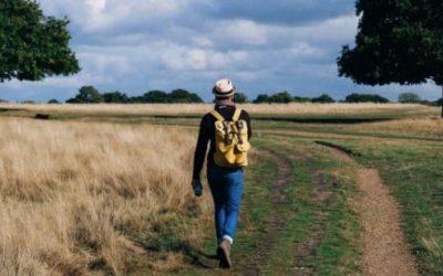 De kracht van bewegen en wandelen tijdens je werk